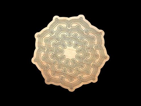 Metaphysical Grid