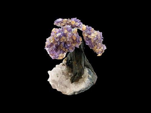 Ametrine Gem Tree - Small