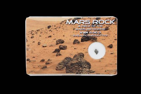 Mars Rock - A Piece Of The Mars Meteorite