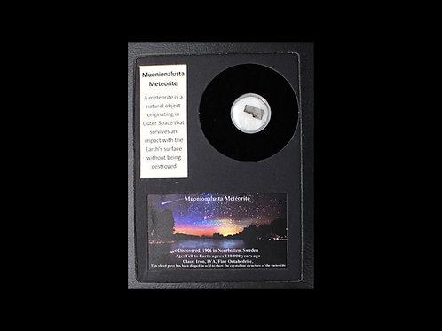Muonionalusta Meteorite in Display Frame