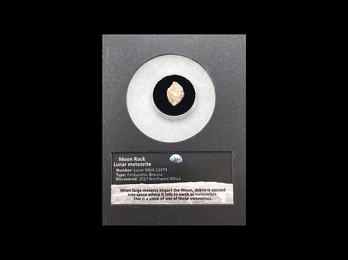 Moon Rock - Lunar Meteorite