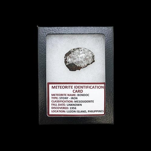Bondoc Meteorite - Stony-Iron - Philippines