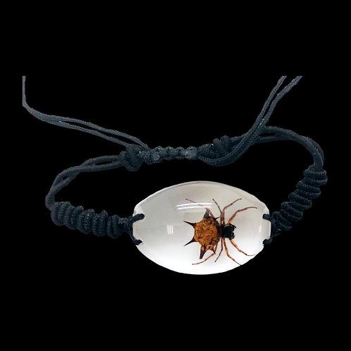 Fossilized Spider Bracelet