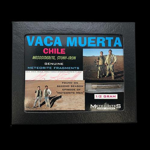 Vaca Muerta - Chile - Mesosiderite, Stony Iron