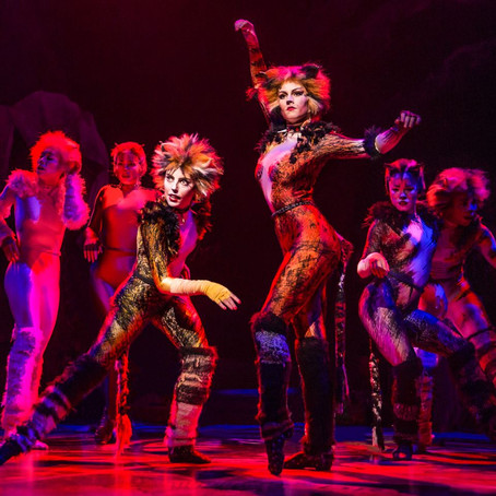 Cats. Not the Musical
