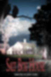 SBH Poster V.4.jpg