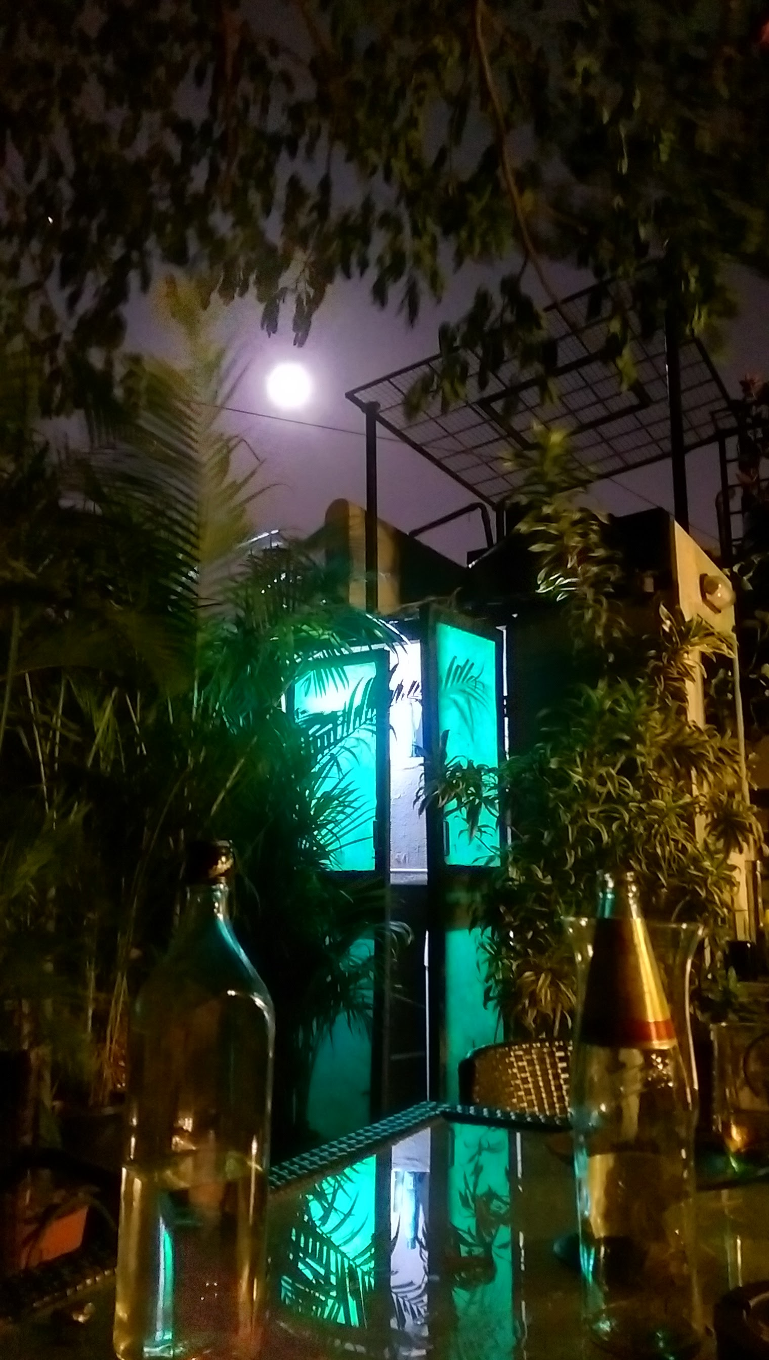 Moonlit Night on the terrace