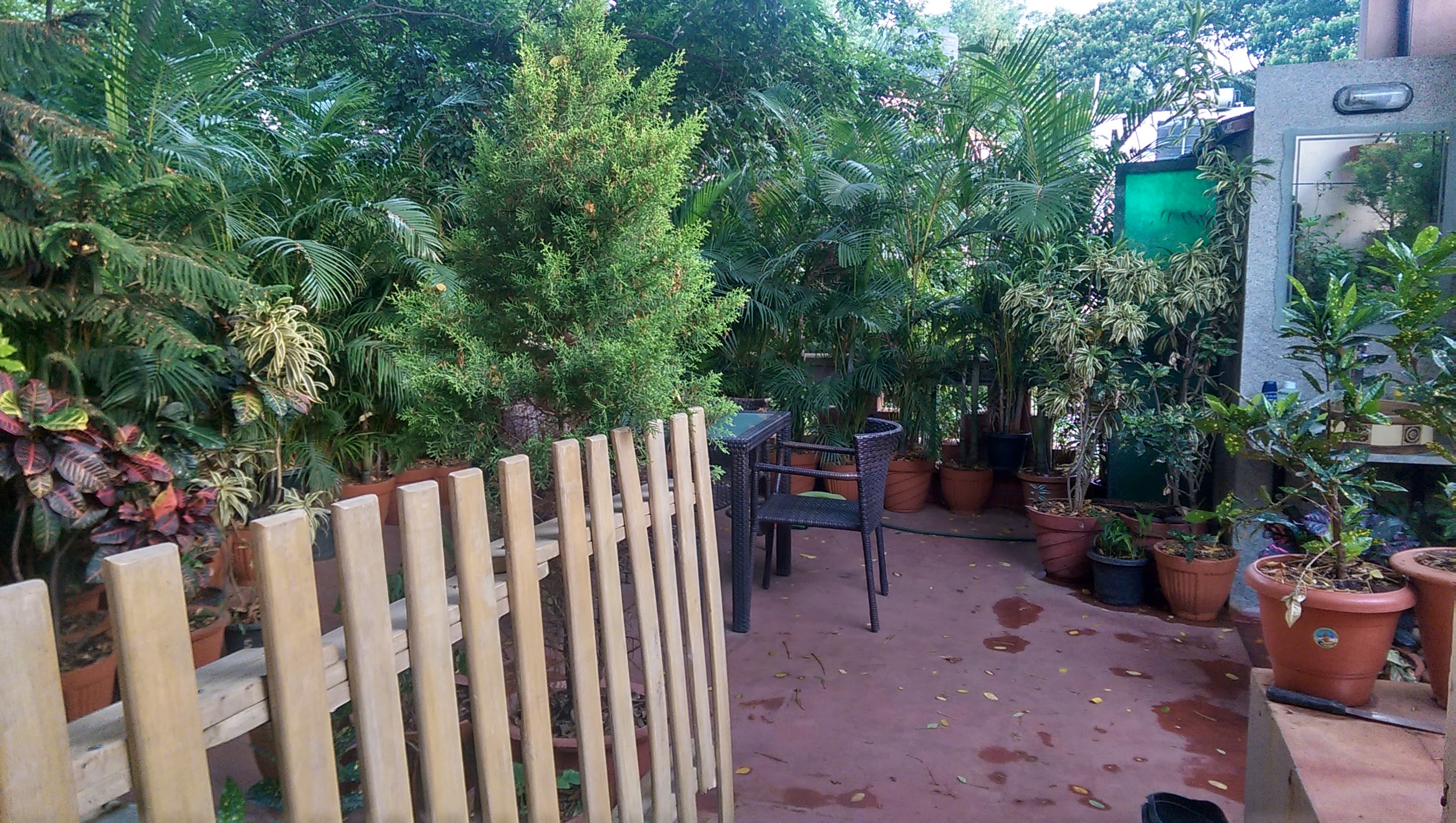 Best Coliving Space in Bangalore
