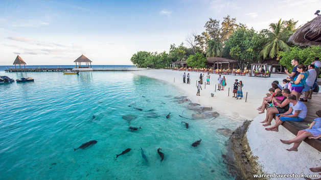 Jumeirah Vittaveli Island, the Maldives