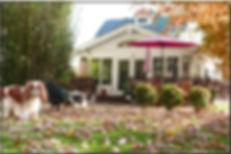 Autumn Home.jpg