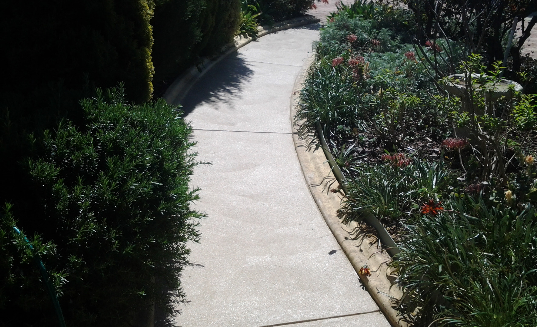 Decorative Concrete Footpath Adelaide