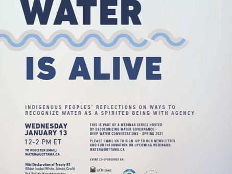 Water is Alive: a conversation