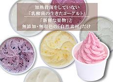 cp_topics_oseibo_ninki_6.jpg