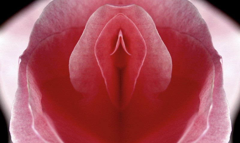 Yoni is the Sanskrit word for vagina or vulva and therefore stands for the most special, delicate but also strong female body part. | How to Give Her the Best Intimate Massage | Treats for Her Yoni | Dating with Fawn | Philadelphia, PA, USA