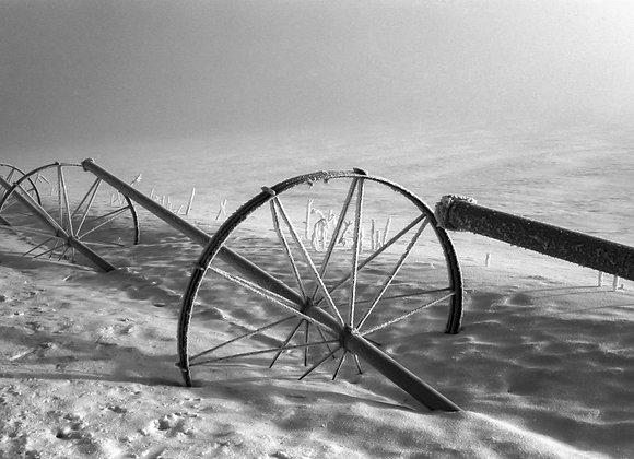 Irrigation Wheels #1