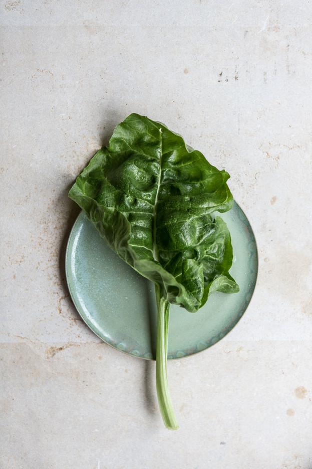 Kyle Books - Around the World in Salads