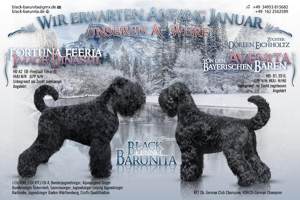 Schwarzer Russischer Terrier Welpen