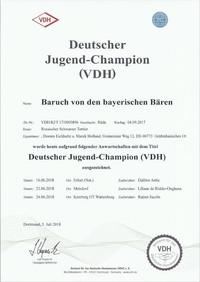 Dt.Jg.Ch.VDH