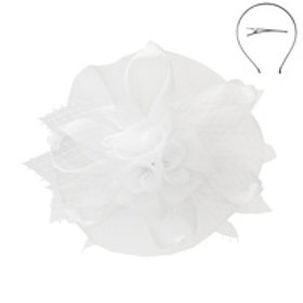Color: White Mesh Flower Feather Fascinator.