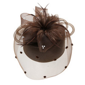 Color: Brown Pill Box W/Mesh And Feather.