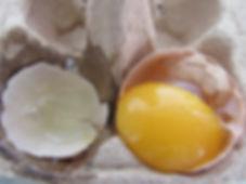 oeuf, blanc, jaune, casser, magasin, faire shampoing à l'œuf, recette, avis