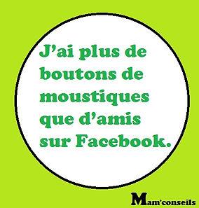 humour, moustiques, facebook, j'ai plus de boutons que d'amis facebook