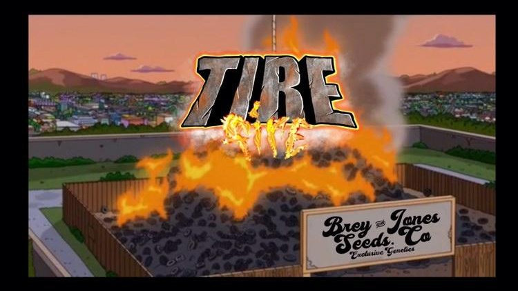 Tire fire 🔥