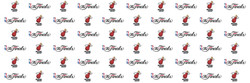 Miami_Heat_Step_And_Repeat_Printing