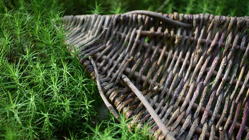 Wavy Hedgerow Platter