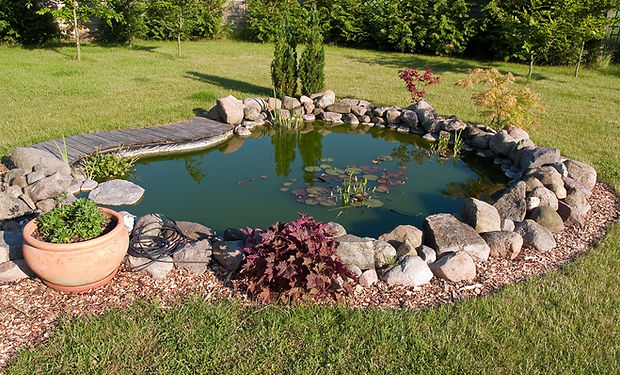 Garden Design & Maintenance