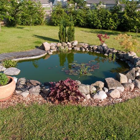 New koi pond installation in Lynnwood.