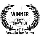 BEST SHORT FILM_Female-Eye-2019.jpg