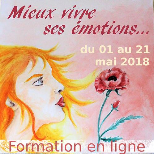 Mieux vivre ses émotions : Formation