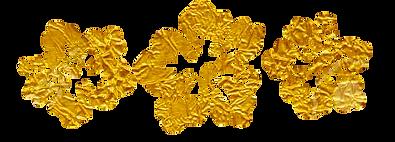 gold kahau kones logo.png