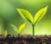 GrowingThroughPersonalDevelopment-o7vjpz