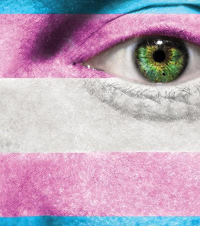 trans flag.jpg