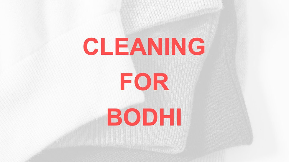 CLEANING (for BODHI)