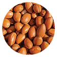 argan oil-02.png