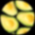 avocado-02.png