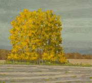 9. Oil on Canvas 10.5x11.5%22 .jpg