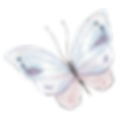 butterfly-clipart-feather-transparent.pn