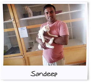 Sandeep.jpg