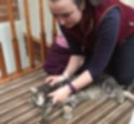 Cat physio, Derbyvetphysio