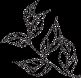 leaf 3_edited.png