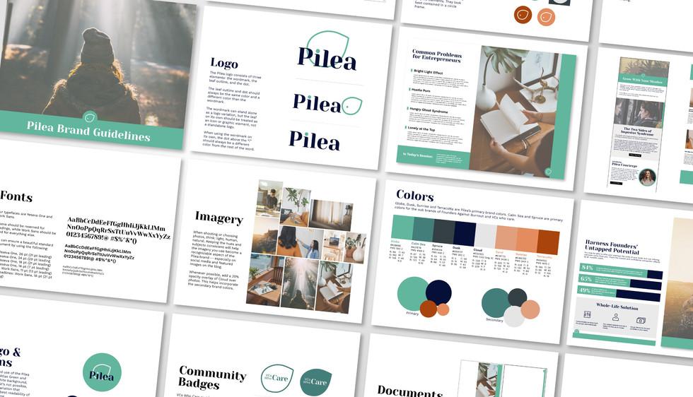 Pilea Portfolio-09_edited.jpg