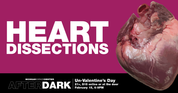 heart dissection social graphic-11-10.jp