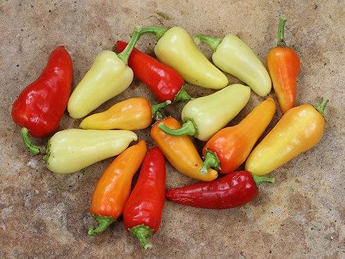 Pepper, Hot - Santa Fe Grande Jalapeno