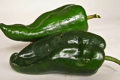 Pepper, Hot - Poblano / Ancho