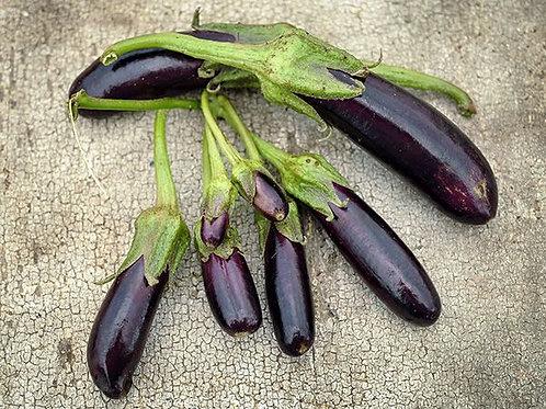 Eggplant - Little Fingers