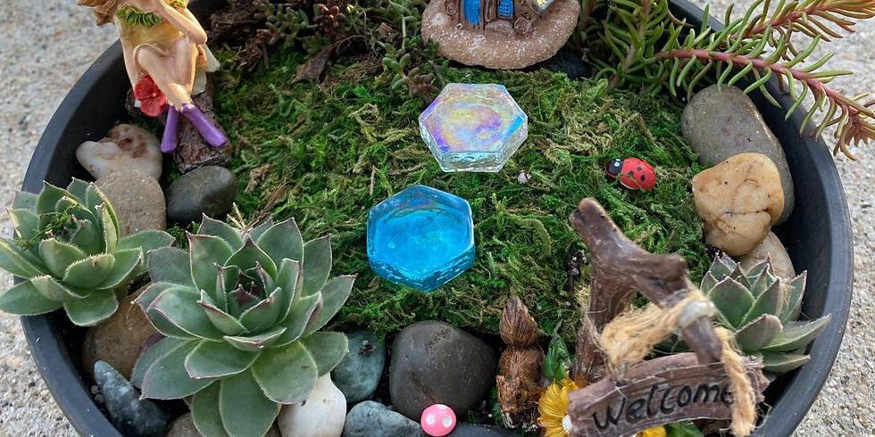 Hardy Succulent Fairy Garden